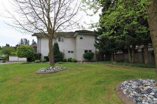 Photo 16: 20558 122 Avenue in Maple Ridge: Northwest Maple Ridge House for sale : MLS®# R2302746