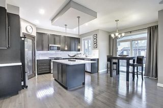 Photo 8: 900 Copperfield Boulevard SE in Calgary: Copperfield Detached for sale : MLS®# A1079249