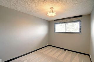 Photo 29: 68 Bermondsey Way NW in Calgary: Beddington Heights Detached for sale : MLS®# A1152009