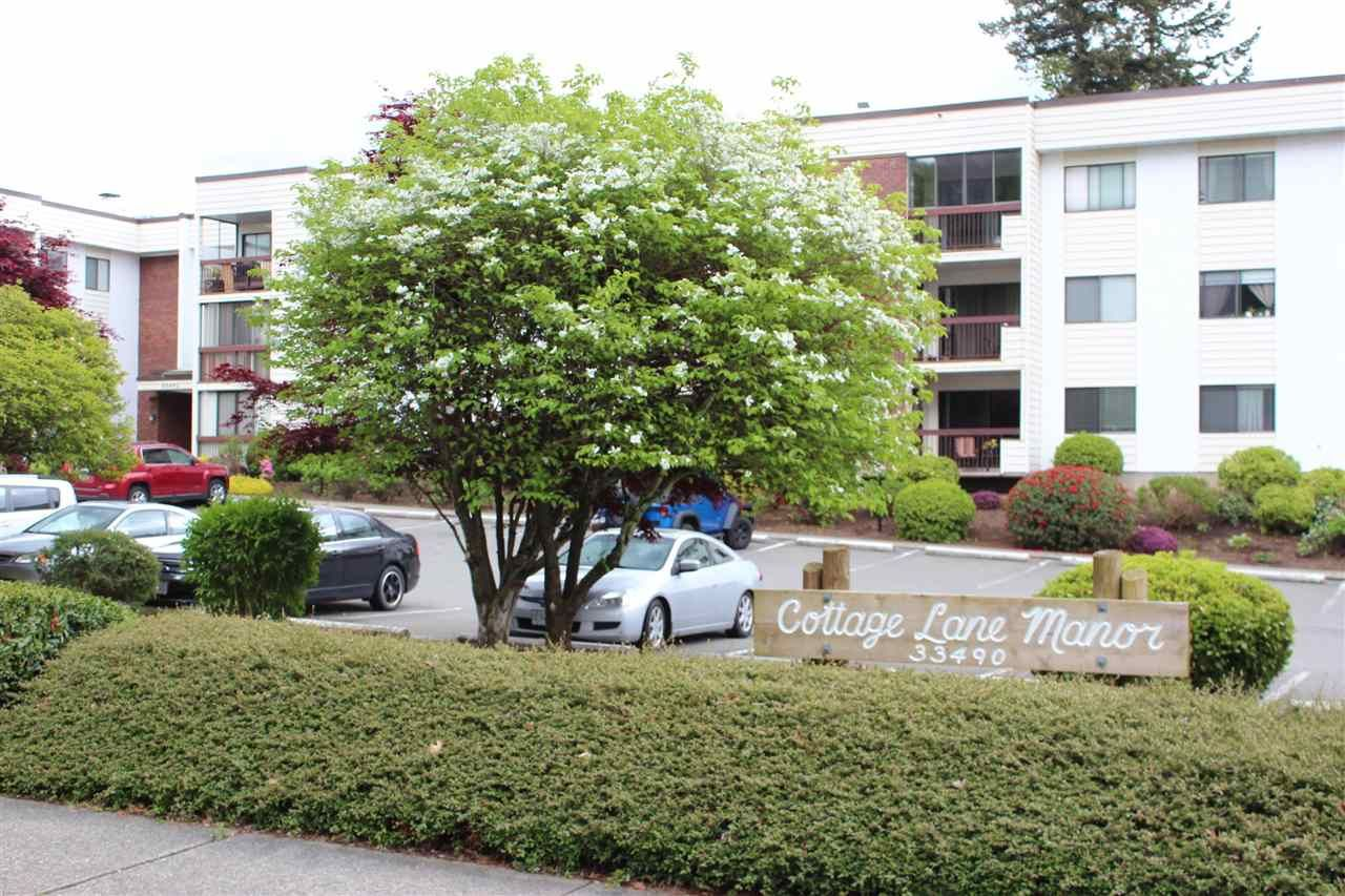 """Main Photo: 115 33490 COTTAGE Lane in Abbotsford: Central Abbotsford Condo for sale in """"Cottage Lane"""" : MLS®# R2577071"""