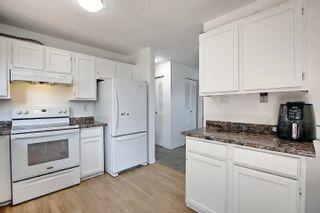 Photo 14:  in Edmonton: Zone 35 House for sale : MLS®# E4254409
