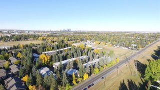 Photo 38: 6714 Leaside Drive SW in Calgary: Lakeview Detached for sale : MLS®# A1058173