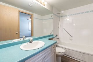 Photo 13: 9735 91 Street NW in Edmonton: Zone 18 Carriage for sale : MLS®# E4240247