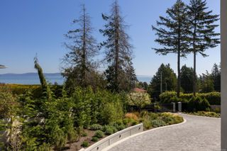 Photo 45: 4044 Hollydene Pl in : SE Arbutus House for sale (Saanich East)  : MLS®# 873482