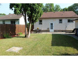 Photo 15: 43 Kingswood Avenue in WINNIPEG: St Vital Residential for sale (South East Winnipeg)  : MLS®# 1420561