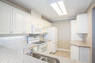"""Photo 5: 1011 12148 224 Street in Maple Ridge: East Central Condo for sale in """"Panorama"""" : MLS®# R2601212"""