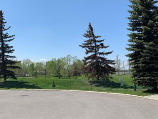 Photo 43: 525 DOUGLAS WOODS Place SE in Calgary: Douglasdale/Glen Detached for sale : MLS®# C4247773