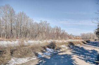 Photo 42: 130 Bow Meadows Drive: Cochrane Detached for sale : MLS®# A1079678