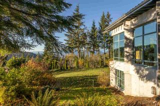 Photo 5: 6120 BROWN Road in Abbotsford: Sumas Mountain House for sale : MLS®# R2542889