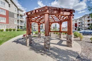 Photo 18: 6312 155 Skyview Ranch Way NE in Calgary: Skyview Ranch Apartment for sale : MLS®# A1105747