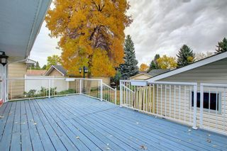 Photo 8: 248 Midlake Boulevard SE in Calgary: Midnapore Detached for sale : MLS®# A1144224