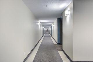 Photo 29: 321 6315 135 Avenue in Edmonton: Zone 02 Condo for sale : MLS®# E4255490