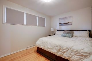 Photo 16: 3531 35 Avenue SW in Calgary: Rutland Park Detached for sale : MLS®# A1059798