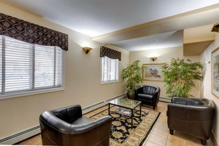 Photo 23: 212 777 3 Avenue SW in Calgary: Eau Claire Apartment for sale : MLS®# A1146241
