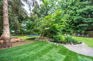 Photo 18: 9438 205B STREET in Langley: Walnut Grove House for sale : MLS®# R2126283