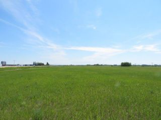 Photo 10: 0 PTH 15 Highway in Dugald: RM Springfield Vacant Land for sale (R04)  : MLS®# 202016001