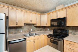 Photo 15: 215 279 SUDER GREENS Drive in Edmonton: Zone 58 Condo for sale : MLS®# E4250469
