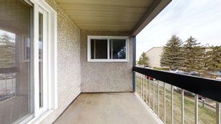 Photo 23: 212 2624 MILL WOODS Road E in Edmonton: Zone 29 Condo for sale : MLS®# E4263901
