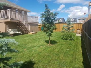 Photo 35: 481 Sunset Link: Crossfield Detached for sale : MLS®# A1081449