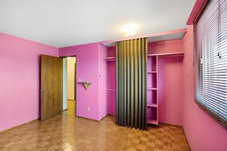 Photo 21: 128 Dovertree Place SE in Calgary: Dover Semi Detached for sale : MLS®# A1075565