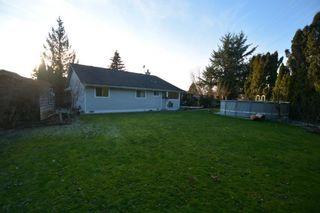 Photo 10: 23775 119B Avenue in Maple Ridge: Cottonwood MR House for sale : MLS®# R2541212