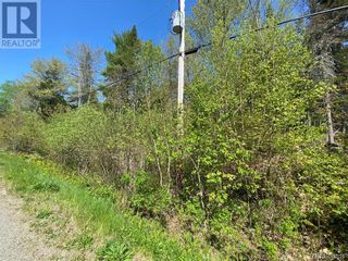 Photo 7: 5264 Rte 770 in Rollingdam: Vacant Land for sale : MLS®# NB058269