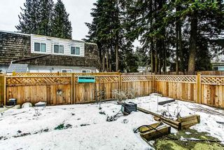 """Photo 13: 42 21555 DEWDNEY TRUNK Road in Maple Ridge: West Central Townhouse for sale in """"RICHMOND COURT"""" : MLS®# R2131390"""