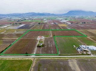 Photo 3: 34659 TOWNSHIPLINE Road in Abbotsford: Matsqui House for sale : MLS®# R2560847