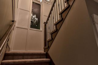 Photo 10: : White Rock House for sale (South Surrey White Rock)  : MLS®# R2275699