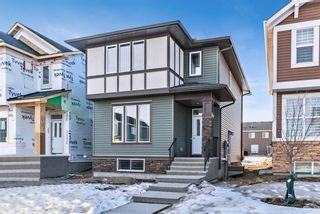 Photo 1: 170 Evanscrest Place NW in Calgary: Evanston Detached for sale : MLS®# A1063717