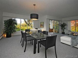 Photo 10: 202 2920 Cook St in VICTORIA: Vi Mayfair Condo for sale (Victoria)  : MLS®# 599662