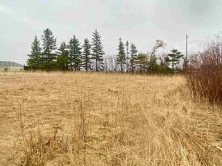 Photo 8: Lot 16-1 Highway 6 in Toney River: 108-Rural Pictou County Vacant Land for sale (Northern Region)  : MLS®# 202106393