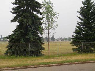 Photo 6: 14436 62 Street in Edmonton: Zone 02 House for sale : MLS®# E4255493