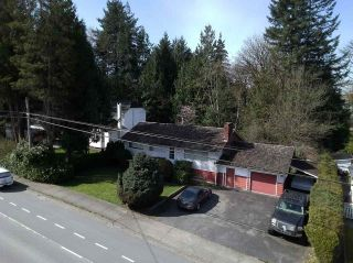 Photo 1: 12541 224 Street in Maple Ridge: West Central House for sale : MLS®# R2564140