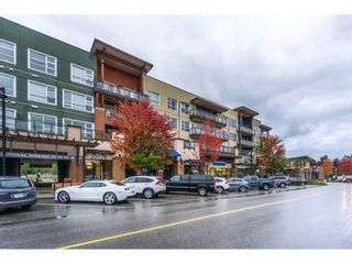 """Main Photo: 217 20728 WILLOUGHBY TOWN Centre in Langley: Willoughby Heights Condo for sale in """"KENSINGTON"""" : MLS®# R2214439"""