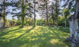 Photo 25: 309 SECOND Avenue in Clandeboye: R13 Residential for sale : MLS®# 202115361