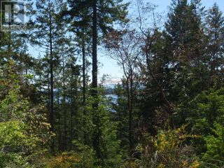 Photo 4: 10060 FINN BAY ROAD in Powell River: Vacant Land for sale : MLS®# 15895
