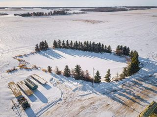 Photo 41: 57228 RGE RD 251: Rural Sturgeon County House for sale : MLS®# E4225650