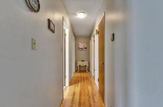 Photo 26: 7766 BURRIS Street in Burnaby: Burnaby Lake House for sale (Burnaby South)  : MLS®# R2603254
