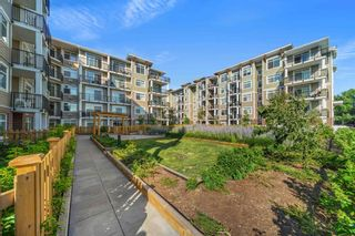 """Photo 32: 215 20696 EASTLEIGH Crescent in Langley: Langley City Condo for sale in """"The Georgia"""" : MLS®# R2598741"""