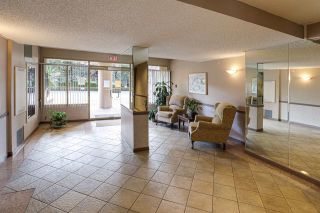 "Photo 4: 409 1190 PIPELINE Road in Coquitlam: North Coquitlam Condo for sale in ""The Mackenzie"" : MLS®# R2539387"