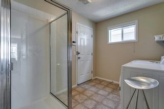Photo 42: 94 Royal Elm Way NW in Calgary: Royal Oak Detached for sale : MLS®# A1107041