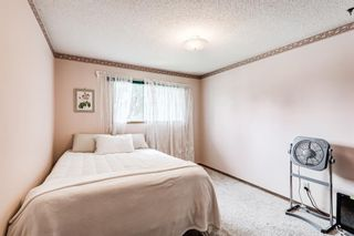 Photo 32: 5836 Silver Ridge Drive NW in Calgary: Silver Springs Detached for sale : MLS®# A1145171
