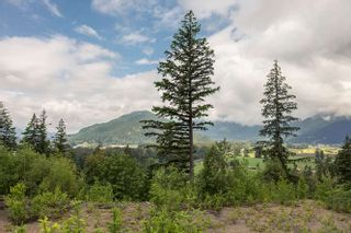 "Photo 40: 1464 OSPREY Place in Agassiz: Mt Woodside House for sale in ""HARRISON HIGHLANDS"" (Harrison Mills)  : MLS®# R2074494"