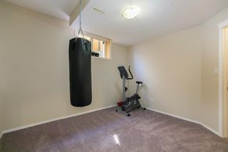 Photo 39: 245 Springmere Way: Chestermere Detached for sale : MLS®# A1095778