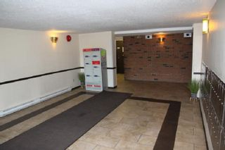 """Photo 2: 319 45598 MCINTOSH Drive in Chilliwack: Chilliwack W Young-Well Condo for sale in """"MCINTOSH MANOR"""" : MLS®# R2559581"""
