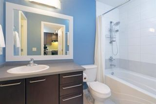 Photo 12: 414 35 Richard Court SW in Calgary: Lincoln Park Apartment for sale : MLS®# A1084480