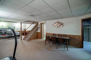 Photo 26: 169 Kildonan Meadow Drive in Winnipeg: Kildonan Meadows Residential for sale (3K)  : MLS®# 202008495