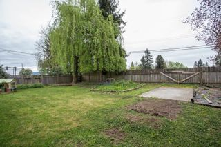 Photo 31: 22088 SELKIRK Avenue in Maple Ridge: West Central House for sale : MLS®# R2573871
