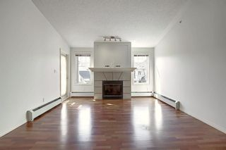 Photo 11: 503 2419 ERLTON Road SW in Calgary: Erlton Apartment for sale : MLS®# A1028425